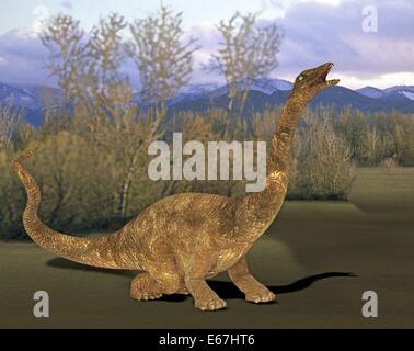 Dinosaurier Diplodocus / dinosaur Diplodocus - Stock Image