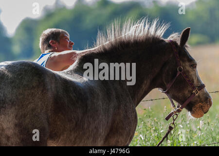 Woman gooming a horse, Osterley Park, Isleworth, Middlesex, England