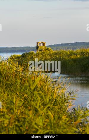 Bird-watching watchers wooden observation post Dalmatia Croatia Vrana lake - Stock Image