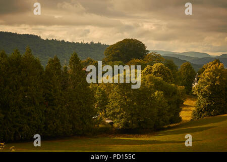 Pasture in Summer, Windermere, Lake District National Park, Cumbria, England, UK - Stock Image