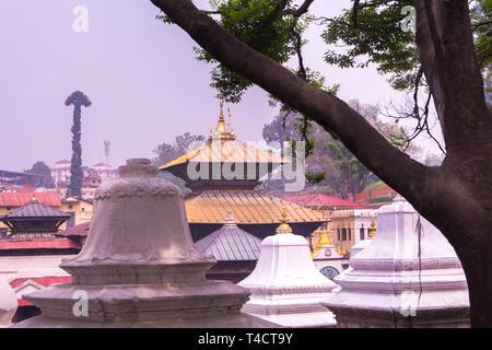 Hindu Temple Pashupatinath ( Shiva temple ) - Stock Image