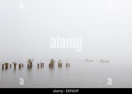 Boating in the fog - Stock Image