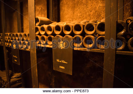 1986 Clos du Chateau  Wine bottles in the cellars at Château de Pommard, Route des Grands Crus Burgundy France - Stock Image
