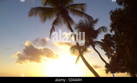 Tropical seascape at sunset - Stock Image