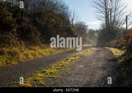 remote road on a sunny winter afternoon - Stock Image