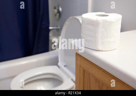 Roll of toilet paper sitting beside an open toilet in the washroom - Stock Image