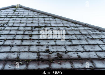 Poole, Dorset, UK. 23rd January 2019. Frosty grass and rooftops on a January morning on the south coast of England as the UK enters a cold snap. Credit: Thomas Faull/Alamy Live News - Stock Image