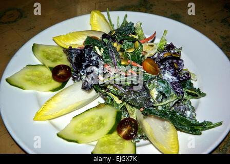 Green salad appetizer - Stock Image