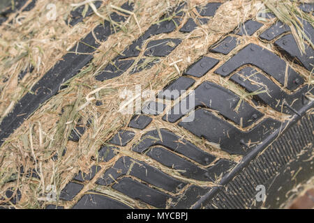 Small front tractor tyre with grass cuttings lodged between the tread grooves. - Stock Image