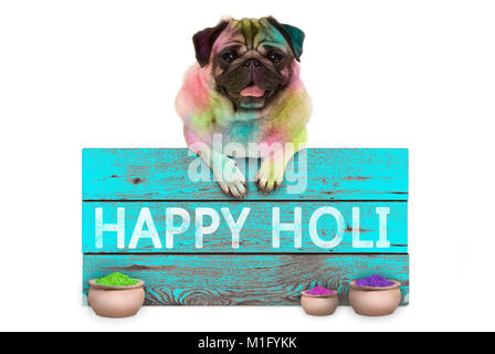 lovely Festival of colors pug puppy dog, covered with colored powder, hanging on sign with text happy Holi, isolated - Stock Image