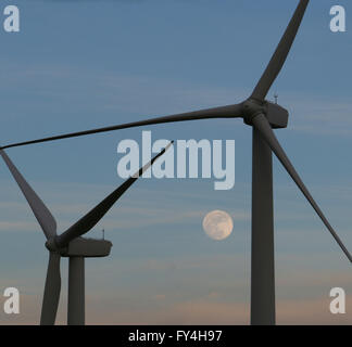 Wind mill turbines farm, California and moon - Stock Image