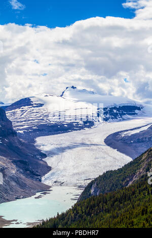 Sweeping vista of Saskatchewan Glacier flowing from the Columbia Icefields as seen from the crest of Parker Ridge on the Icefields Parkway in Jasper N - Stock Image