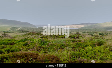 View of Abbotts Lagoon from a distance, Point Reyes National Seashore, Marin County, California, USA,  on a foggy day  and cloudless sky - Stock Image