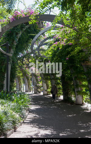 Shaded walkway through the South Bank precinct, Brisbane, Queensland, Australia - Stock Image
