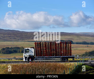 HGV with load of empty pallets. M6 Southbound carriageway, Shap, Cumbria, England, United Kingdom, Europe. - Stock Image