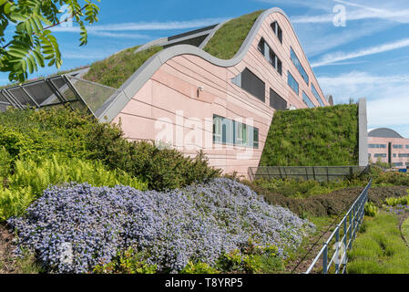 Alder Hey Childrens hospital building in Knotty Ash, Liverpool - Stock Image