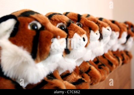 Eight stuffed tiger toys lined up in a row.Focus is on the second tiger in the pack. - Stock Image