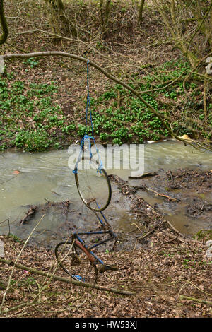 Rusting bicycle being used as a swing within woods close to a steam near the north Oxfordshire village of Hook Norton - Stock Image