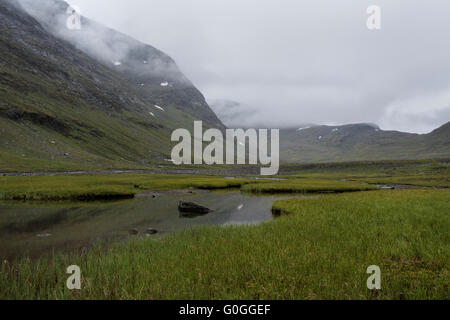 Marshy grassland in Tjäktjavagge on southern side of Tjäktja pass, Kungsleden trail, Lapland, Sweden - Stock Image