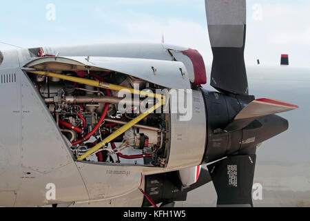 Close-up of an Allison T56 turboprop engine on a German Navy P-3C Orion maritime patrol aircraft - Stock Image