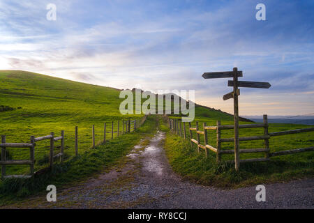 wooden signpost near a path - Stock Image