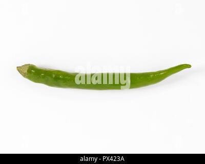 a green chilli pepper on a white background - Stock Image