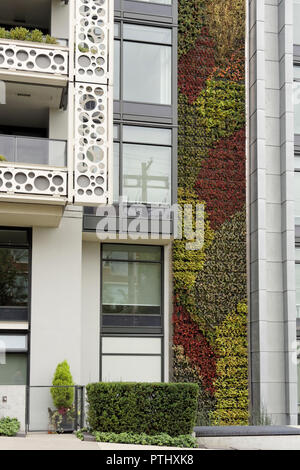 Green wall or living wall vertical garden on the side of modern residential building in Vancouver, BC, Canada - Stock Image