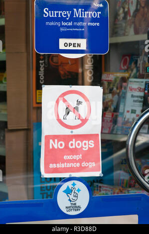 No Dogs Except Assistance Dogs Sign On A Shop Door - Stock Image