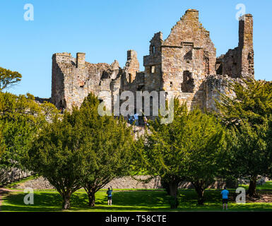 Medieval ruined 13th century Dirleton Castle fortress, popular visitor attraction, East Lothian, Scotland, UK with blue sky - Stock Image