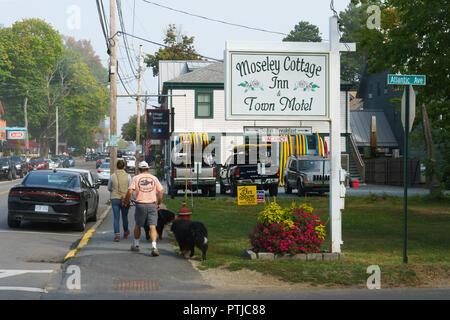 Pedestrians walking their dogs on Main Street, Bar Harbor, Maine, USA. - Stock Image
