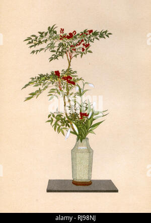 NANDIN and WHITE LILY an arrangement for placing in an alcove on New Year's Day - Stock Image