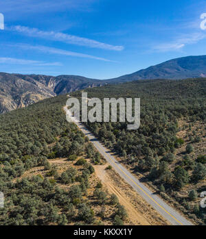 Single road through a forest in the mountains of southern California. - Stock Image