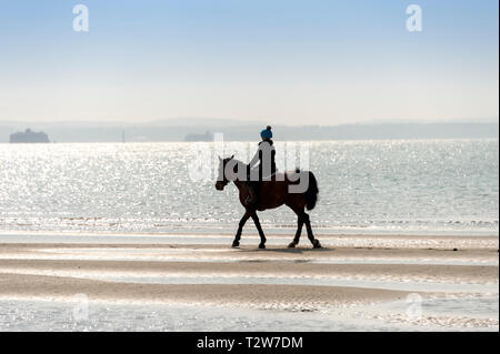 horse and rider at the waters edge, backlit. - Stock Image