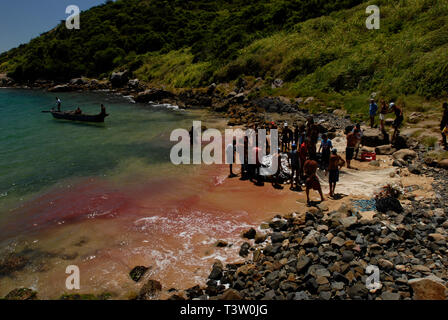 Collective fishing, blood in water, Arraial do Cabo, Rio de Janeiro State, Brazil. - Stock Image