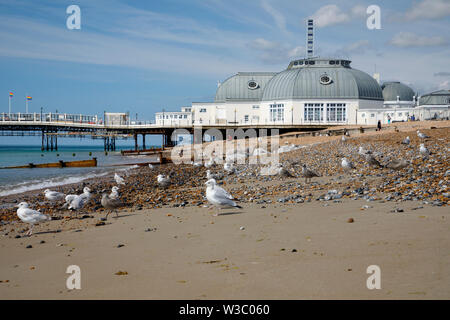 WORTHING, UK - JULY 13, 2019: Sea gulls are sitting on the pebbel beach in front of art deco pier in Worthing - Stock Image