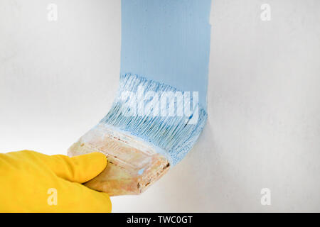 Painting wall with a brush by hand - Stock Image
