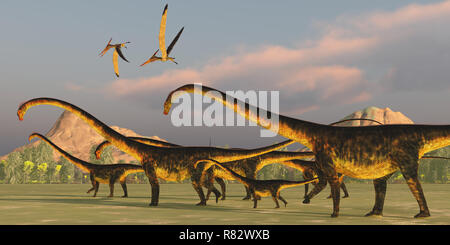 Barosaurus Dinosaur Herd - A Barosaurus dinosaur herd watches over it's youngsters as two Pteranodon reptiles fly over. - Stock Image