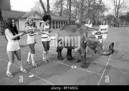 Strange tales of London. Beauty Queens (who will be in the pancake race on Tuesday) and baby elephant Minoti - she is five, but for an elephant that is a baby. February 1975 75-00776-005 - Stock Image