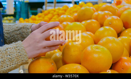 Woman buying fresh grapefruits at grocery store - Stock Image