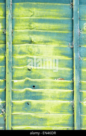 Yellow and green pattern on a weathered wooden fence, as a background - Stock Image