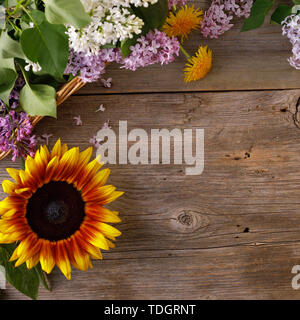 The decor of flowers on the background of vintage wooden planks. Vintage background with flowers of dandelion sunflower and lilac and a place under th - Stock Image