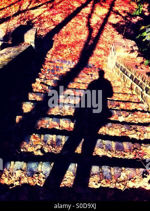 Shadow on stairway in park - Stock Image
