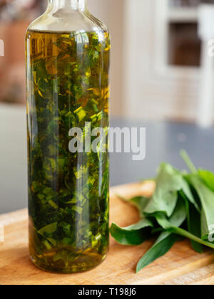 Bottle with wild garlic oil. - Stock Image
