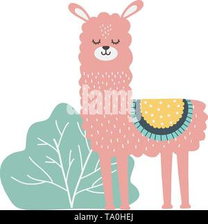 Llama cartoon design, Animal cute zoo life nature and fauna theme Vector illustration - Stock Image