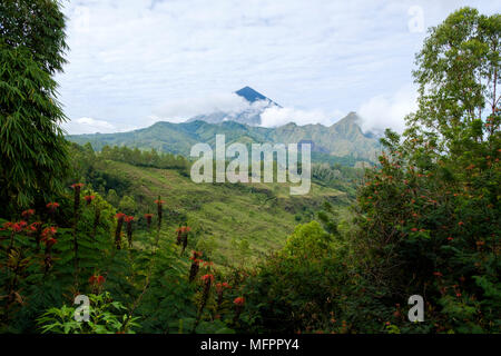Mount Inerie (2,227 m), a volcano, seen from the road between Bajawa and Ruteng, Flores Island (East Nusa Tenggara), Indonesia. - Stock Image