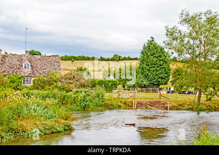 Pastoral scene at the river windrush  at Swinbrook (Oxfordshire), idyllische Szene am Flusse Windrush nahe Swinbrook - Stock Image