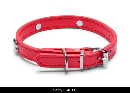 Small Red Leather Dog Pet Collar Isolated on White Background. - Stock Image