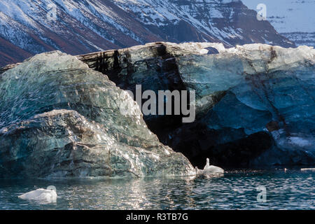 Greenland, Scoresby Sund, Gasefjord. Dirty iceberg from the bottom of glacier. - Stock Image