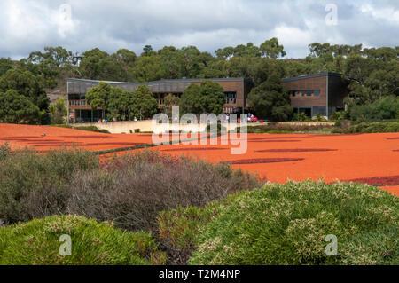 Looking back across the Red Sand Garden, Australian Garden, Cranbourne, Victoria, Australia - Stock Image