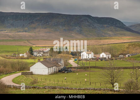 North Pennines landscape, the rural farming hamlet of Langdon Beck, Teesdale, UK with the dramatic Cronkley Scar in the background - Stock Image
